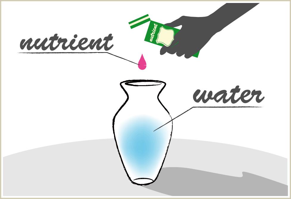 バラに活ける水を作るイメージ画像