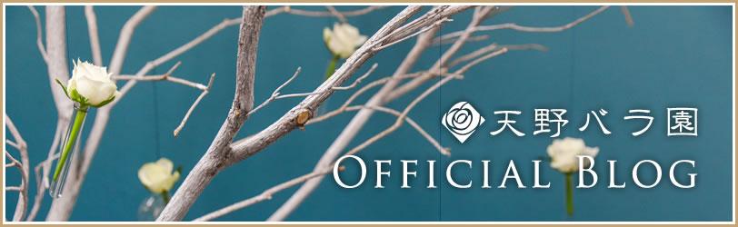 天野バラ園オフィシャルブログ